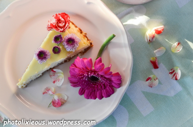 leckerer Cheesecake_12