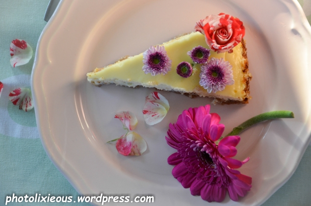 leckerer Cheesecake_14