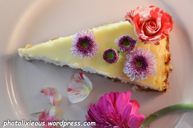 leckerer Cheesecake_15