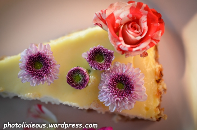 leckerer Cheesecake_17
