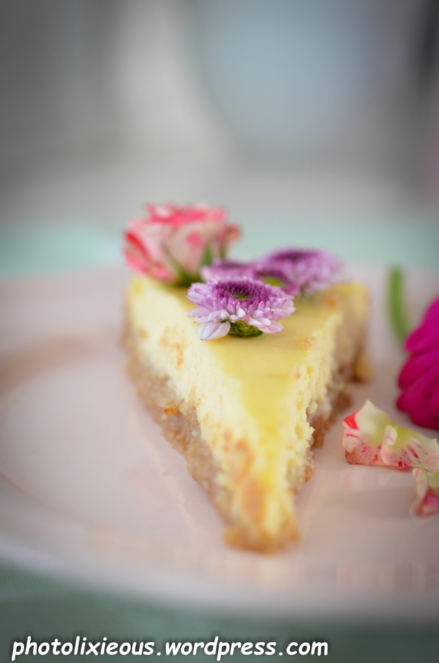 leckerer Cheesecake_23
