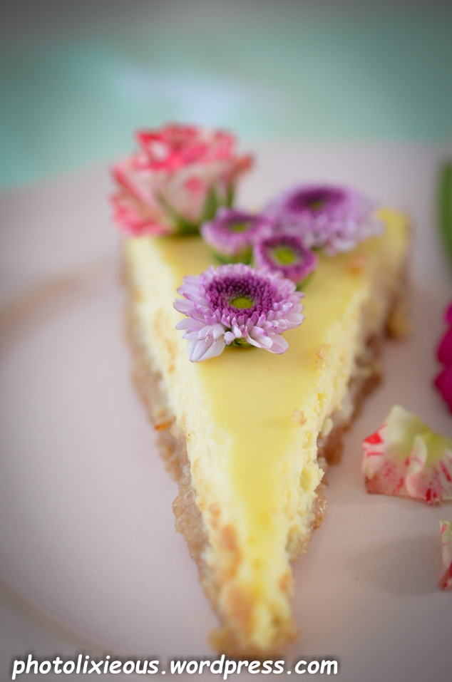 leckerer Cheesecake_24